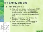 8 1 energy and life3