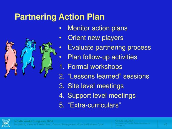 Partnering Action Plan