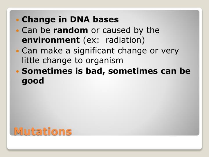 Change in DNA bases