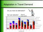 adaptation in travel demand