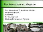 risk assessment and mitigation