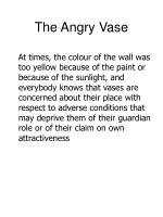 the angry vase11