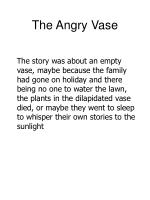 the angry vase38