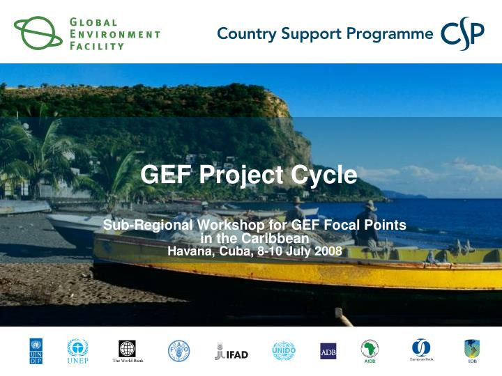 gef project cycle n.