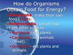 how do organisms obtain food for energy