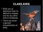 class aves2