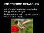 endothermic metabolism