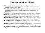 description of attributes