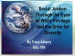 social justice through the eyes of white privilege and the drive for diversity