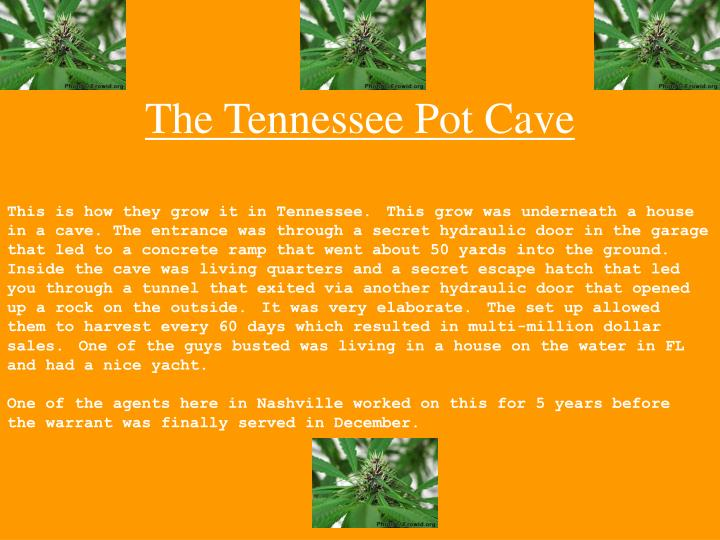 the tennessee pot cave n.