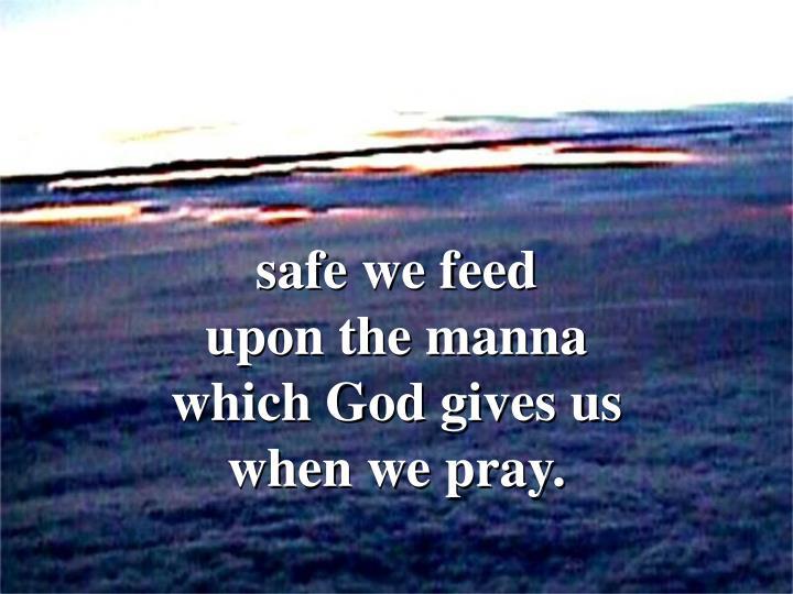 safe we feed