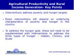 agricultural productivity and rural income generation key points