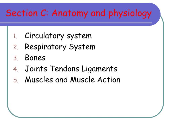 Section C: Anatomy and physiology
