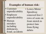 examples of human risk