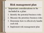 risk management plan1