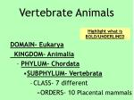vertebrate animals