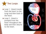 two loops