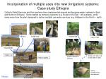 incorporation of multiple uses into new irrigation systems case study ethiopia
