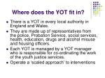 where does the yot fit in