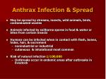 anthrax infection spread