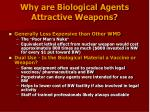 why are biological agents attractive weapons