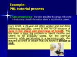example pbl tutorial process