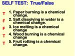 self test true false