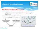 microcytic hypochromic anemia9