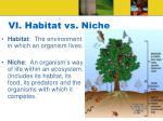 vi habitat vs niche