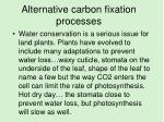 alternative carbon fixation processes