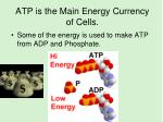 atp is the main energy currency of cells