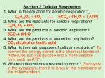 section 3 cellular respiration