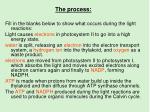 the process1