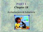 part i chapter 18 archaebacteria eubacteria