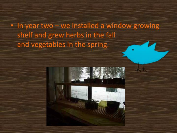In year two – we installed a window growing shelf and grew herbs in the fall                      ...
