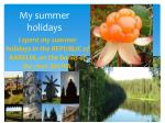 my summer holidays1