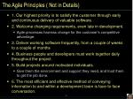 the agile principles not in details