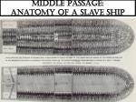middle passage anatomy of a slave ship