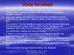 voice terminals
