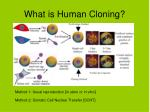 what is human cloning1