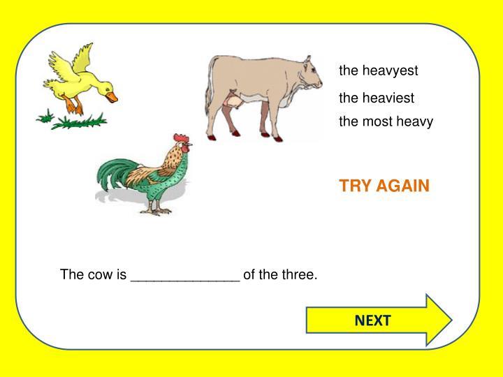 the heavyest