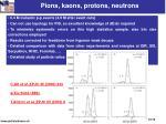 pions kaons protons neutrons