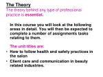 the theory the theory behind any type of professional practice is essential