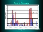 scour survey4