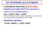 le systeme glutathion2