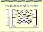 the structure of hybrid nm ga