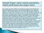 example project labour market expectations relative performance and subject choice