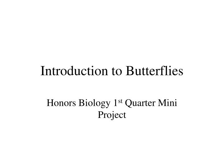 introduction to butterflies n.