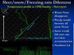 sleet snow freezing rain dilemma temperature profile at 3 pm sunday shreveport