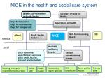 nice in the health and social care system